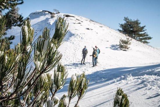 Winter Etna Classic Erfahrung