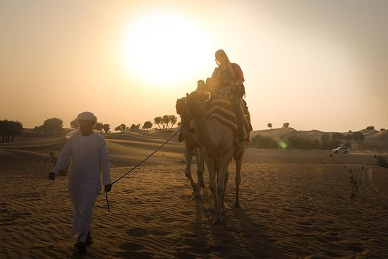 Abu Dhabi: Sunset Camel Trek and BBQ...