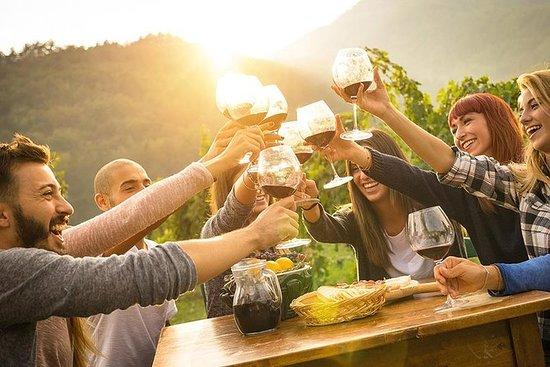 着名的基安蒂葡萄酒产区的独家侍酒师托斯卡纳葡萄酒之旅