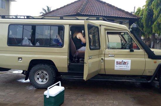 1 dia Mikumi National Park Safari