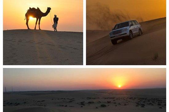 Safári de deserto de pôr-do-sol...