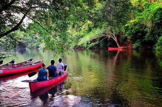 Kanufahren oder Kayak fahren