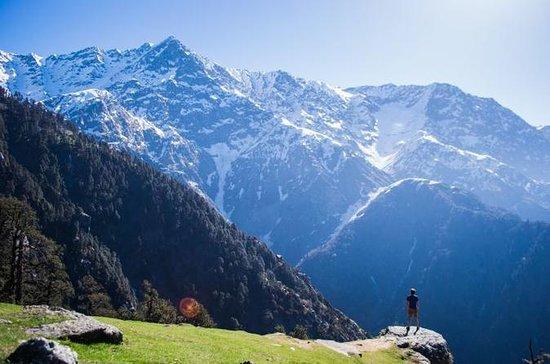 Shimla - Manali Snow Point...