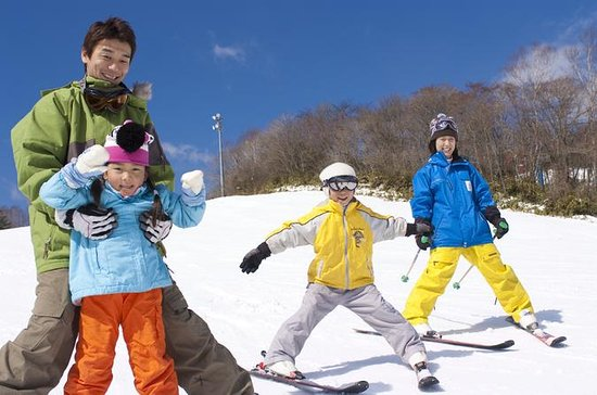Skiing at Mt Fuji with Rental...