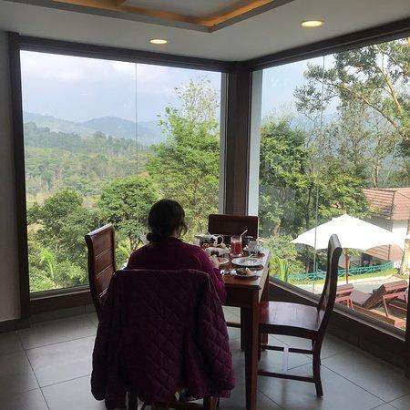 Splendor mountain of Thekkady