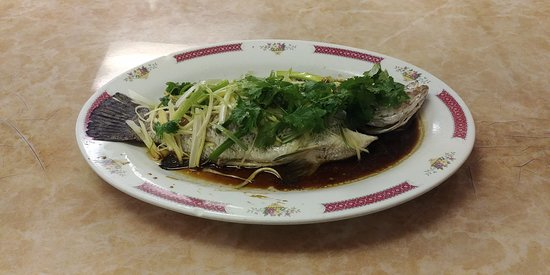 Kam Ding Seafood Restaurant: Steamed Tilapia with Ginger and Green Onions