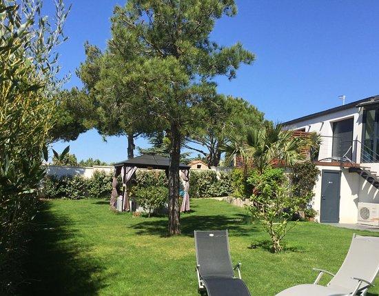 Jardin verdoyant paysager
