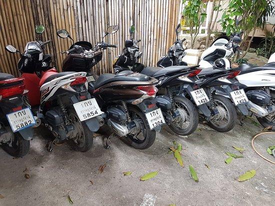 Rent Car & Motorbike Hakuna Matata