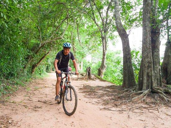 Edu-Cycle Tours