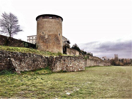 Château de Parthenay