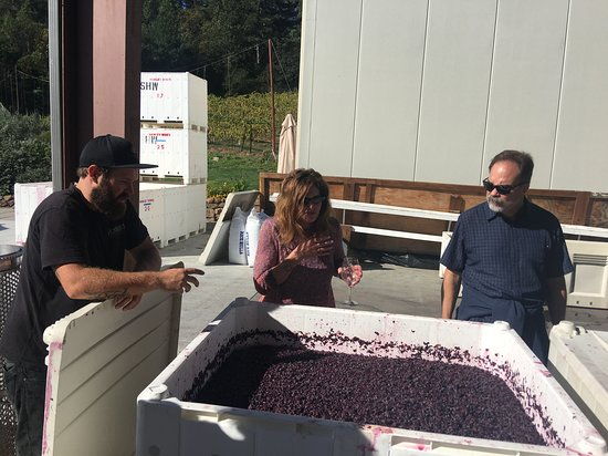 Wine Cube Tours: Hawley Winery