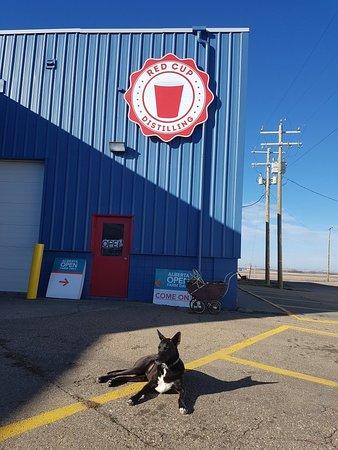 Vegreville, Kanada: Red Cup Distillery
