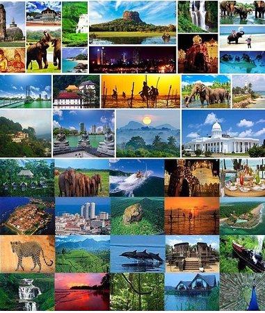 Коггала, Шри-Ланка: http://www.gayantoursrilanka.com.ua https://www.facebook.com/gayantour https://vk.com/gayantours