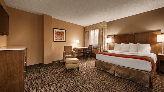 Best Western Los Alamitos Inn & Suites: Guest Room