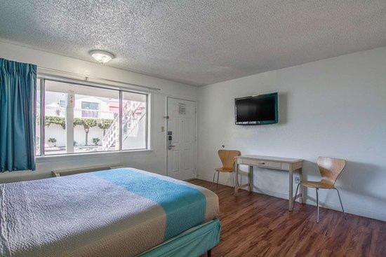 Motel 6 Fort Bragg: single