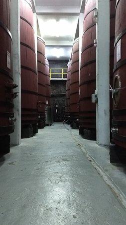 Vinícola Aurora: passei guiado mostrando a história da cooperativa e a fabricação de seus produtos, umas das mais antigas fica no centro de Bento Gonçalves.