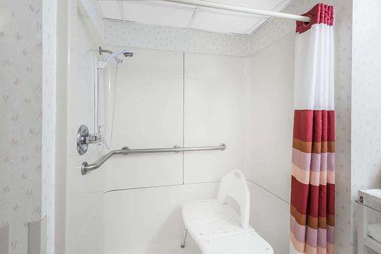 Elyria, OH: Guest room bath