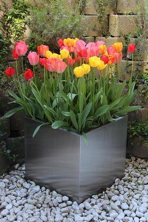 Tulip Inn Lausanne Beaulieu garden