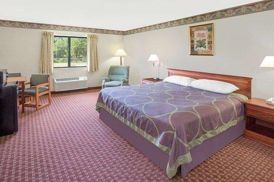 Sawyer, MI: Guest room