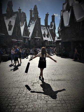 Орландо, Флорида: The Wizarding World of Harry Potter, Island of Adventure, Orlando, EEUU. Febrero 2018