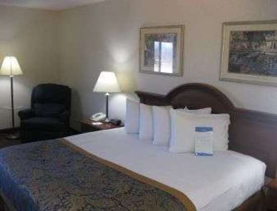 Dowagiac, MI: King Bed Guest Room