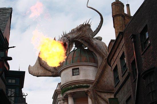 Орландо, Флорида: Waited a long time for the dragon fire :)
