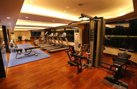 Pride Plaza Hotel Gym