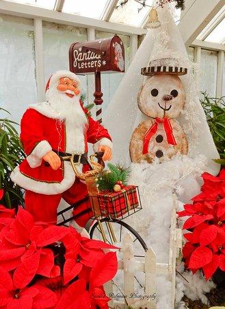 Santa Claus has arrived