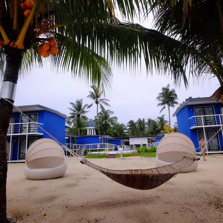 Apsaras Tribe- Siargao: The view: beach, garden, pool.