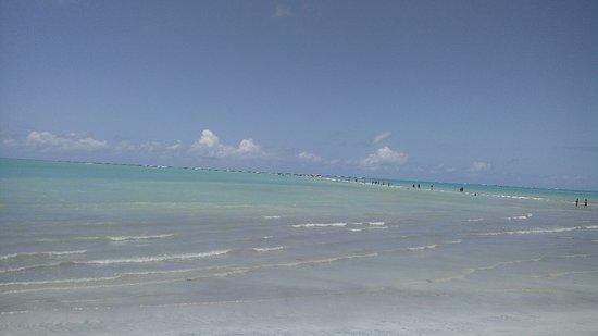 Praias Tur Maragogi