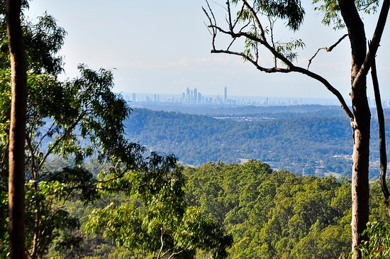 Skyline view from 4WD Track