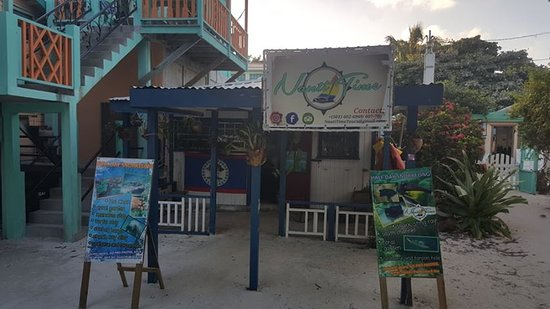 Caye Caulker, Belize: Located right in front of the beach. Stop and visit us. We are willing to accommodate you on snorkeling stops.