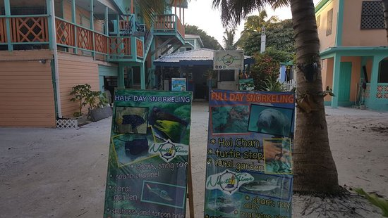 Caye Caulker, Belize: We are 3 minutes walk from boat terminals. Right in front of beach.