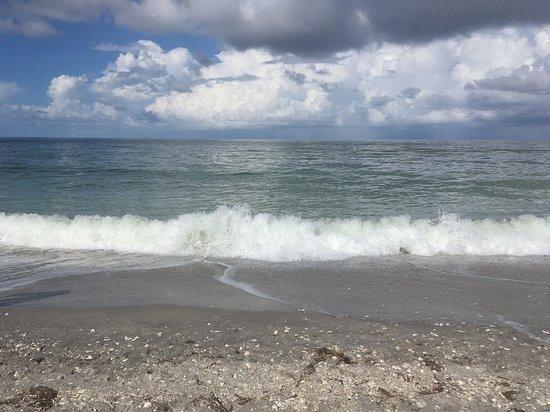 Manasota Beach Yoga, Yoga Manasota Beach