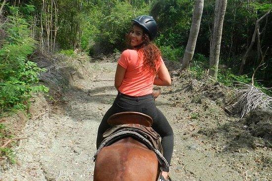 Avventura a cavallo e buggy