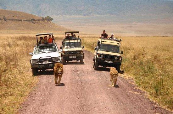 5 giorni Best of Tanzania Budget