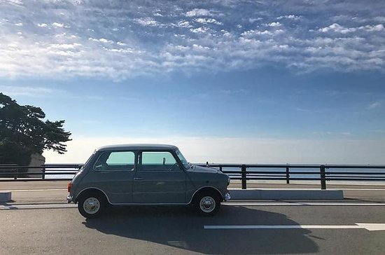 Hermanus Vintage Mini Cooper Experience