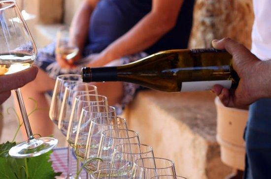 Spansk Vin Testing i Madrid