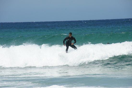 Bondi Beach: surfer