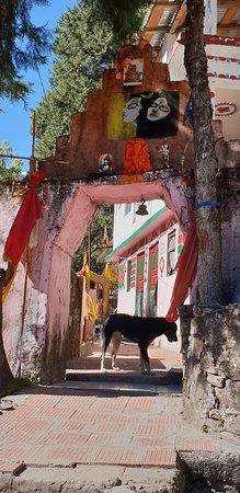 Kalpeshwar Temple照片