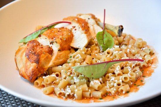 Zamos Cafe Bar Resto: Tomato sauce Rooster, short pasta, dry mizithra cheese