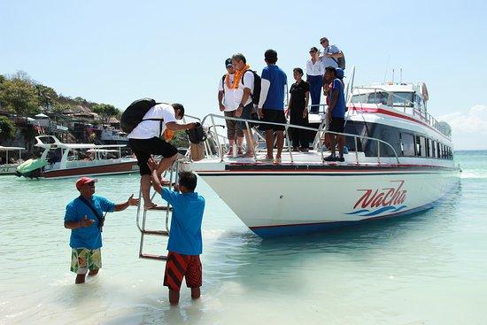 Nacha Fast Boat: Team work