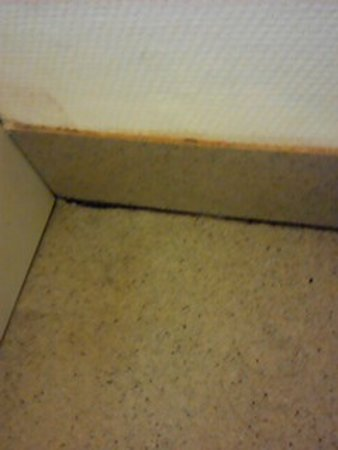 Ibis Budget Agen: De moisissure au pied de la douche