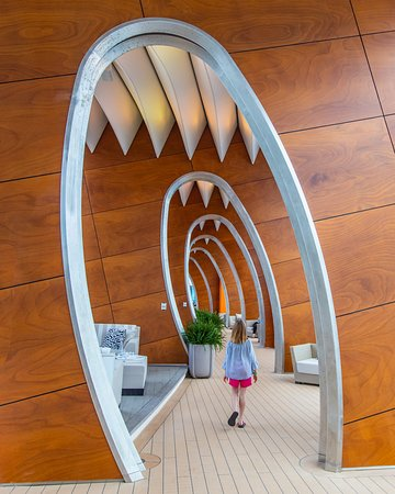 Caraibi: Loved the preview sailing of the Celebrity Edge last week. This is the hallway along the pool cabanas. We called it the Shark Passage!