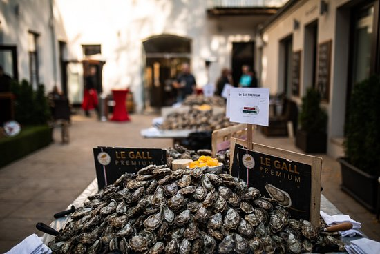 Annual Open Oysters Day 2018 – 2nd Sunday in October