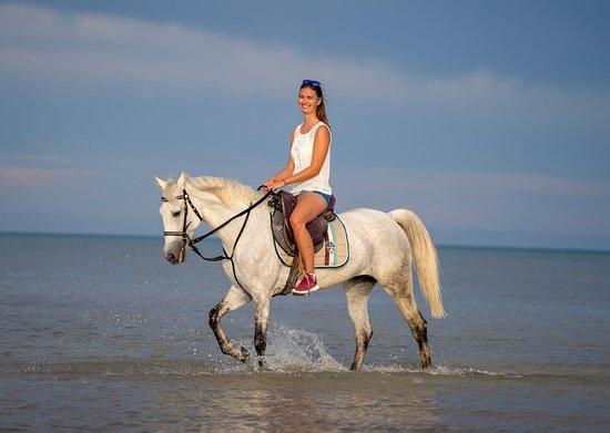 Фотография YallaHorse Riding