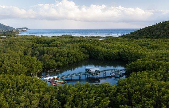 Cades Bay, Antigua: Lagoon area at South Coast Horizons