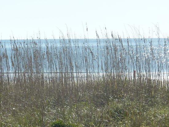 هيلتون هيد, ساوث كارولينا: Grande Ocean Atlantic Front