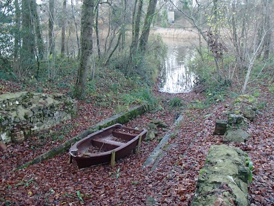 Abandoned boat in the autumn leaves. Southern side.