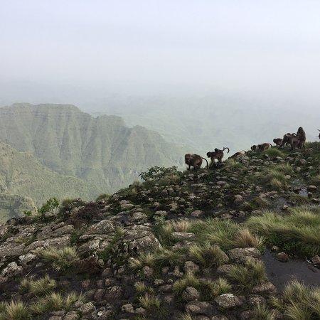 2 day Trekking With Sahlie